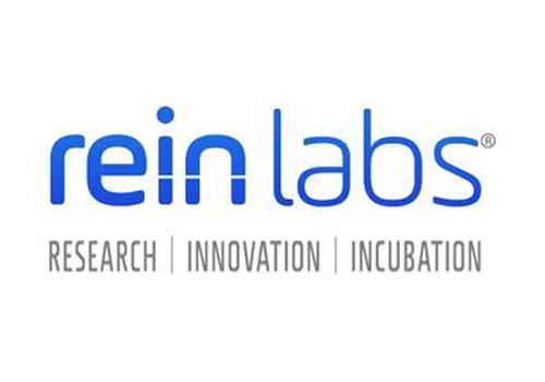 11. Rein Labs